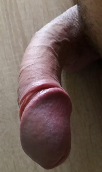 Photo de Longueur 22cm